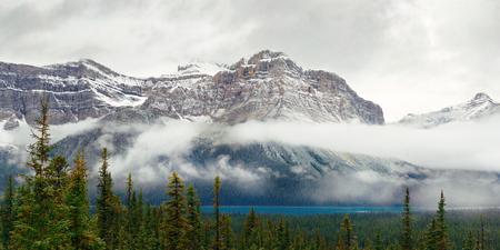 Het panorama van het Boogmeer met sneeuw dekte berg en bos in het Nationale Park van Banff af