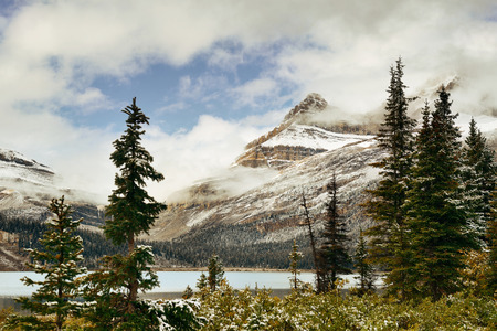 Bow Lake with snow capped mountain and forest in Banff National Park Stock Photo