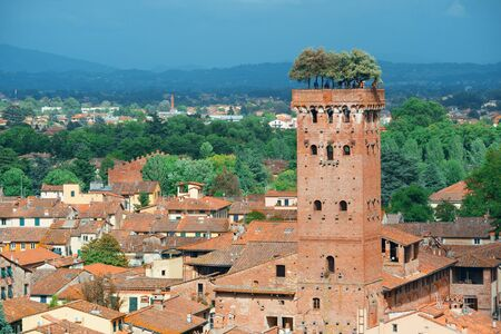 Lucca skyline with Guinigi Tower and cathedral in Italy 免版税图像