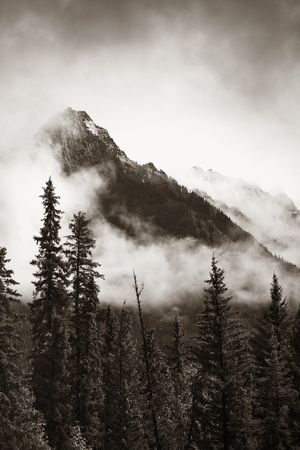 Banff national park foggy mountains and forest in Canada. Stock Photo