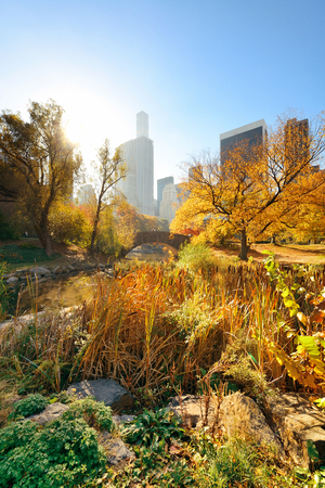 Manhattan Central Park with bridge and skyscraper in Autumn in New York City Stock Photo