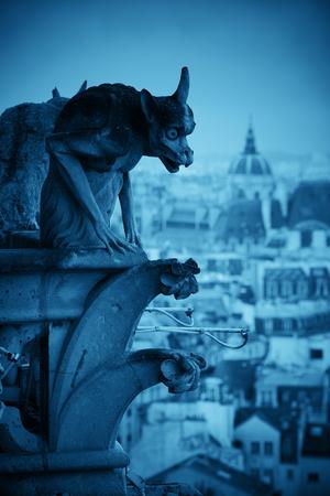 Vue sur les toits de Paris depuis la cathédrale Notre-Dame.
