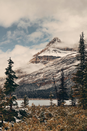 Bow Lake with snow capped mountain and forest in Banff National Park 写真素材