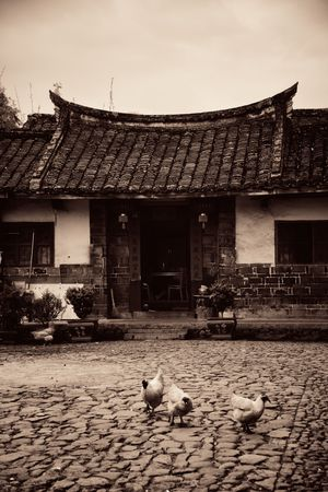 FUJIAN, CHINA – MARCH 2, 2018: Rural courtyard with chicken. Tulou is the unique traditional rural dwelling of Hakka.