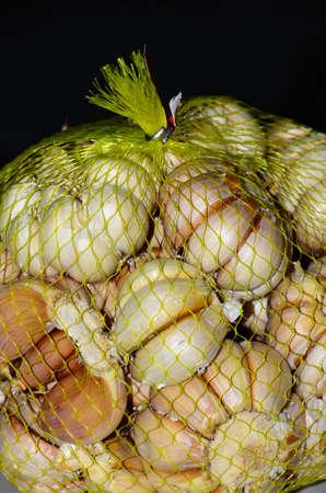 Garlic in a net bag Imagens