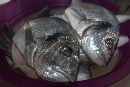 fresh fish in the kitchen