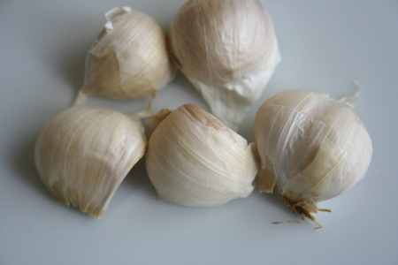 garlic teeth closeup photo