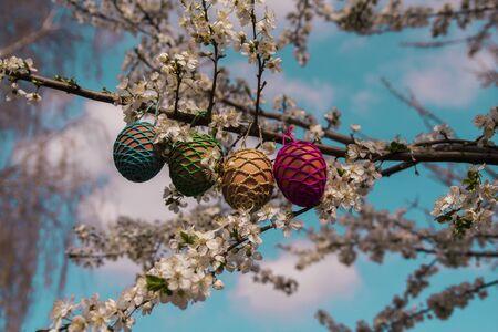 Easter eggs hiding on the tree Reklamní fotografie