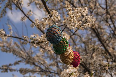 Easter eggs on the tree Reklamní fotografie