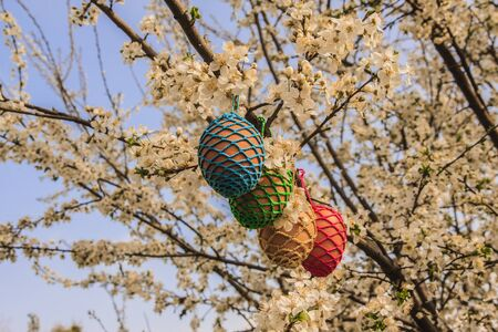 Easter eggs ina a tree