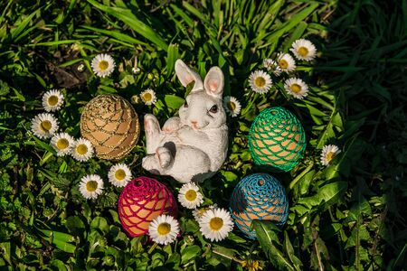 Eggs with bunny Reklamní fotografie