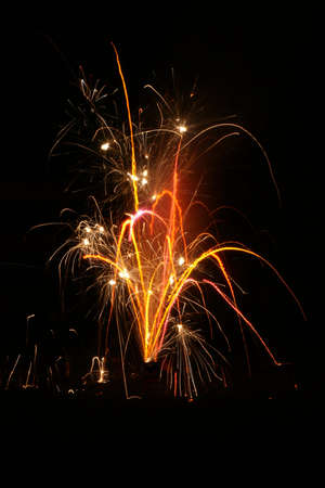 fawkes: One of the fireworks at Guy Fawkes