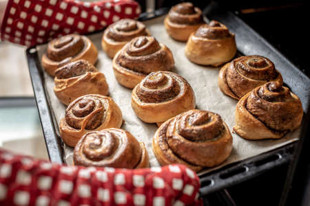 Female hands are taking out fresh fragrant cinnamon rolls from the hot oven. Concept of the homemade baking and cooking.