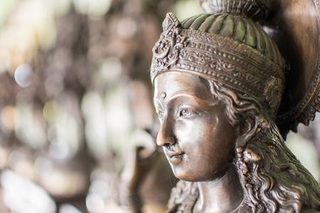Golden Hindu Goddess Kali closeup on a blurred background Фото со стока