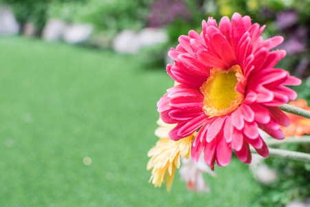 Pink and yellow flowers made from fabric with blurred artificial green grass background.