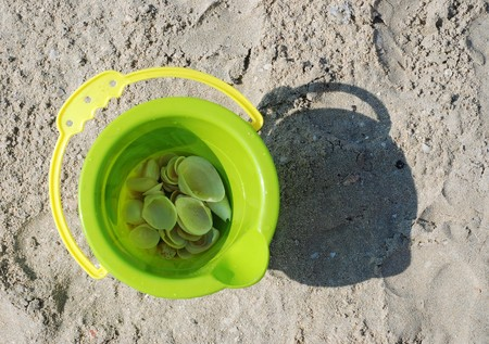 toy bucket with shells on beach Stock Photo
