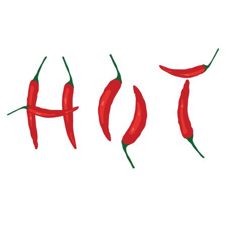 Hot chilli. Vector Illustration.