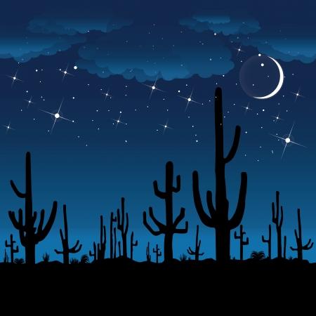 saguaro: Saguaro Cactus at night  Vector background  Illustration