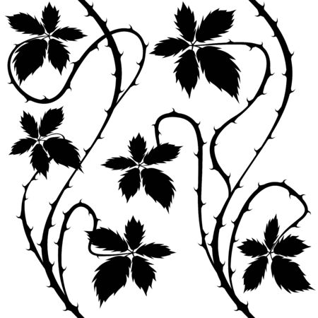 thorn bush: Bush. Floral Seamless Black and White Vector Background.