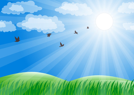 Spring landscape. Green grass and sun shine. Vector background.