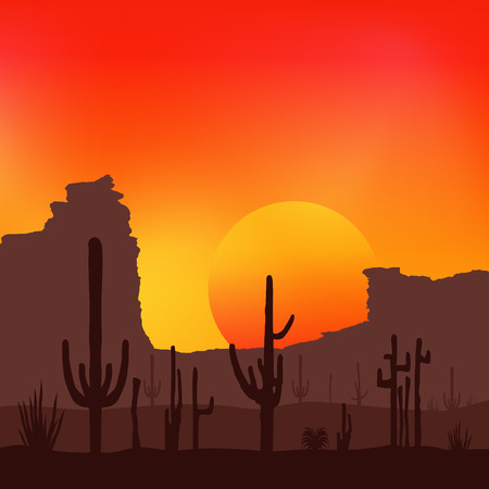 lifeless: Sunset with Saguaro Cactus. Desert. Vector background.
