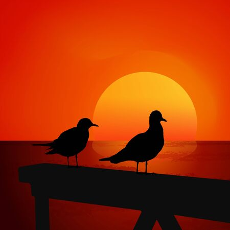 seagulls: Two seagulls at sunset. Colorful vector.