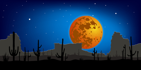 thorny: Desert with Saguaro Cactus against moon. Night scene. Vector landscape.