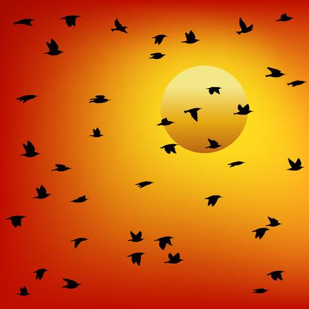 Troep van vogels bij zonsondergang. Kleurrijke vector.