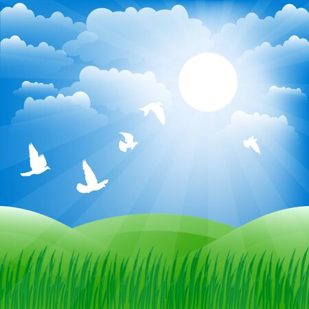 replaced: Spring landscape. Green grass and sun shine. Vector background.