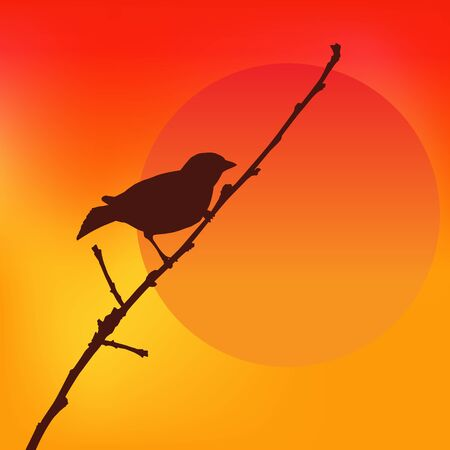 Birds against the sunset. Colorful Vector Illustration.
