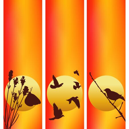 Three vector sunset illustrations. Butterfly and lavender. Birds against sun. Illustration