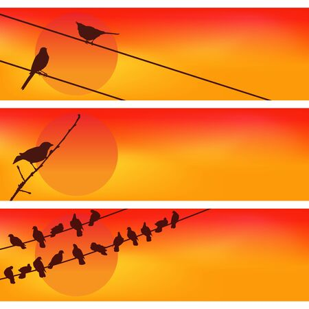 Birds against the sunset. Three Colorful Vectors.