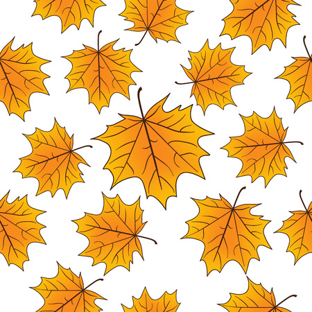 Yellow maple leaves over white seamless pattern. Autumn vector background