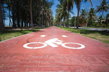 bike lane: Bike lane 1