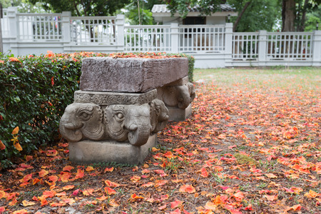 stool: wooden stool with elephant statue base