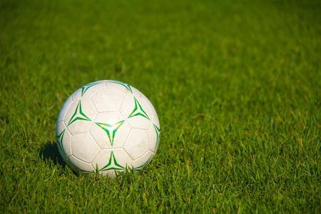 잔디에서 축구 공