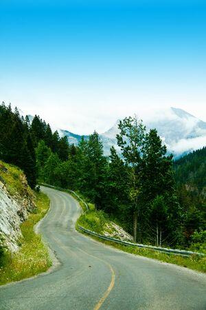 a curvy mountain road through the trees Фото со стока