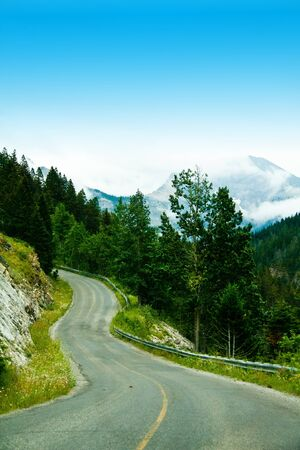 a curvy mountain road through the trees Stock Photo