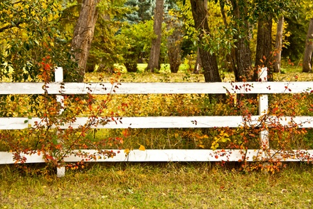a whtie fence with trees in autumn colors Stock Photo
