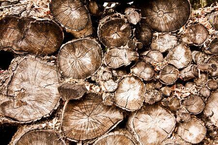 많은 로그와 나무 더미의 배경 스톡 콘텐츠