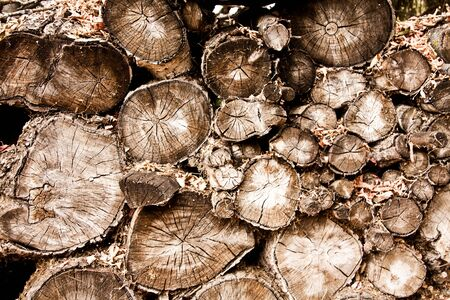 a background of a wood pile with many logs