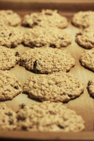 freshly baked cookies on a pan looking straight on
