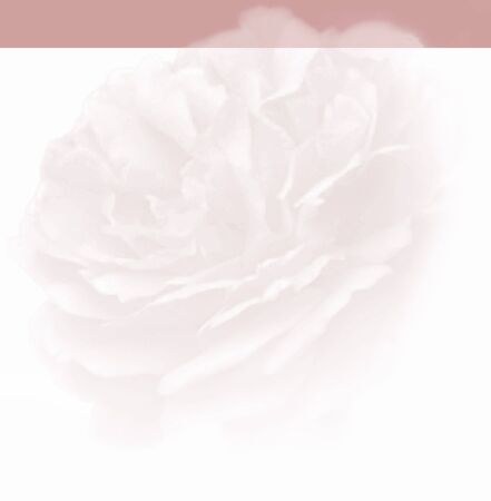 Web design background with different color on top for logo and navigation. With the soft flower in the background, this would be perfect for a wedding or other themed site. Фото со стока