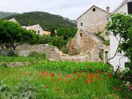 Bol Countryside, Island of Brac, Croatia