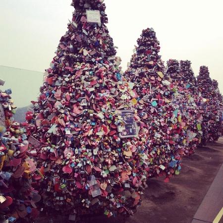 wish: Trees of love locks of wishes