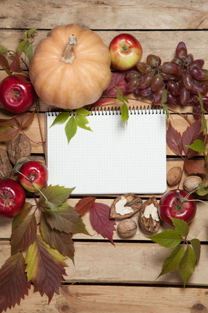 Notebook with empty space for text, framed with autumn fruits