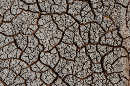 Natural Drought concept:Dried cracked earth soil ground texture background.desert rough land dry crack erosion in the ground due to drought.Dry red clay soil texture, natural floor background Banco de Imagens - 142694417