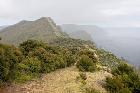 The misty cloud covered seaside cliff trail of the Te Paki Coastal Track in Northland, New Zealand. The narrow hiking trail is visible along the mountain ridges among small bushes beside the sea. Stock Photo
