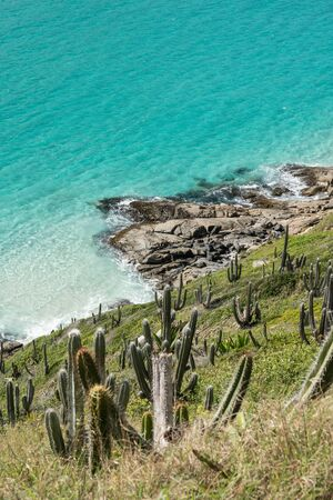 View looking down the cactus covered hillside to the of Aqua Menthe colored tropical turquoise water at Prainhas do Pontal do Atalaia Beach, Arraial do Cabo. The sea is calm with white sand and rocks. Stock Photo