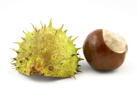 Chestnut with shell. Isolated on white. Stock Photo - 2005787